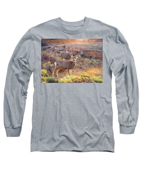 Long Sleeve T-Shirt featuring the photograph Deer In The Sunlight by Darren White