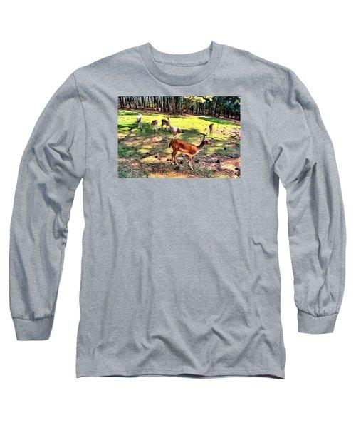 Deerfield Long Sleeve T-Shirt by James Potts