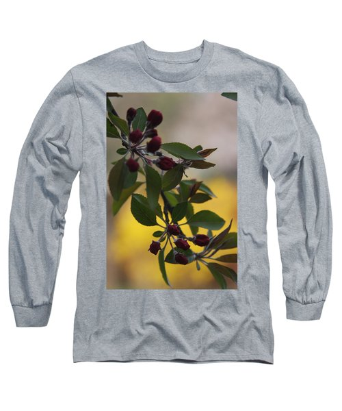 Delicate Crabapple Blossoms Long Sleeve T-Shirt by Vadim Levin