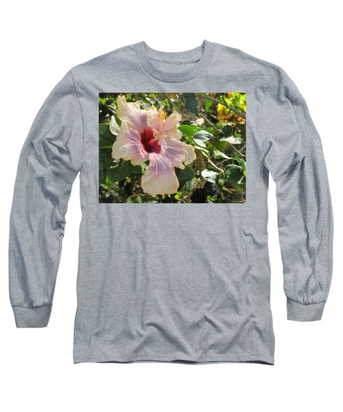 Delicate Expression Long Sleeve T-Shirt