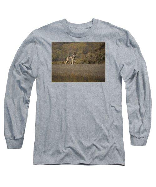 Denali Park Wolf Long Sleeve T-Shirt