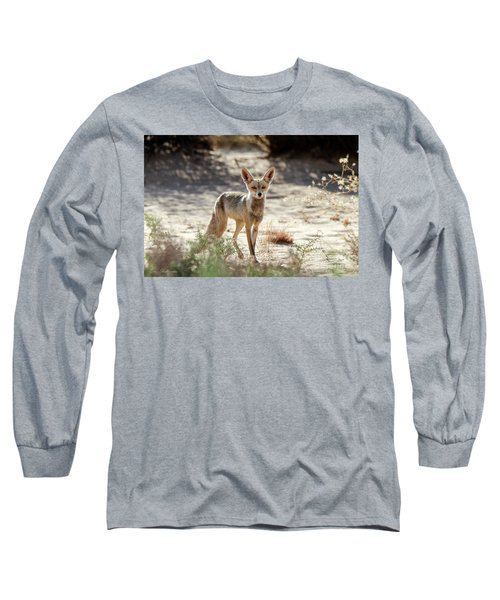 Desert Fox Long Sleeve T-Shirt by Arik Baltinester