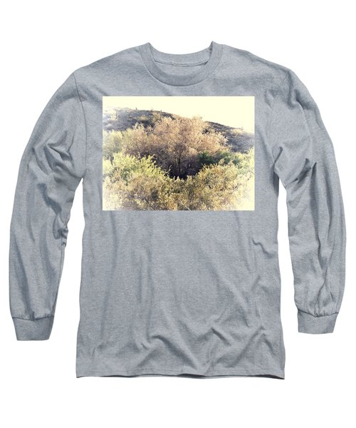 Desert Ironwood Afternoon Long Sleeve T-Shirt