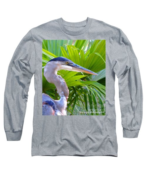Dixieland Blues Long Sleeve T-Shirt