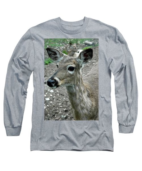 Long Sleeve T-Shirt featuring the photograph Doe Eyes by LeeAnn McLaneGoetz McLaneGoetzStudioLLCcom