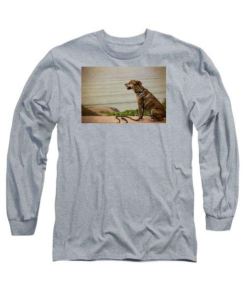 Dog On The Beach Long Sleeve T-Shirt