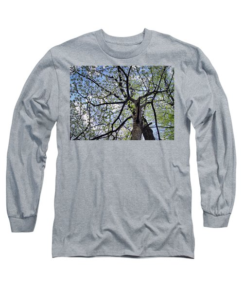 Dogwood Canopy Long Sleeve T-Shirt by Cricket Hackmann