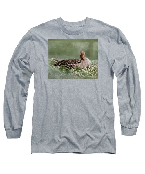 Long Sleeve T-Shirt featuring the photograph Down With The Daisies 2 by Linsey Williams