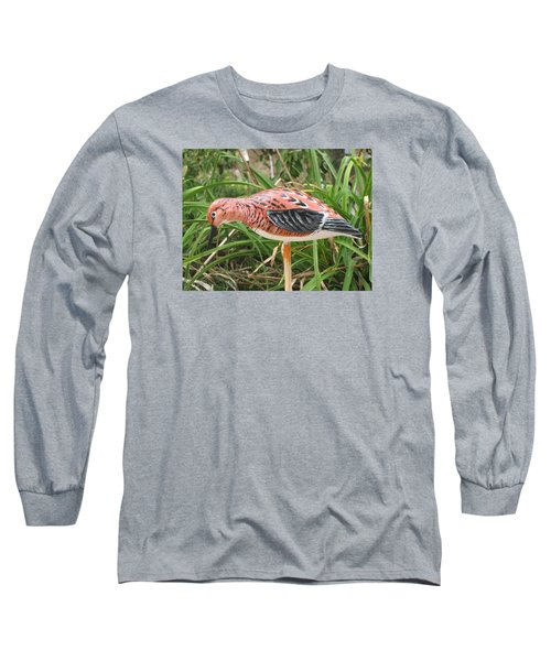 Downward Sanderling Long Sleeve T-Shirt