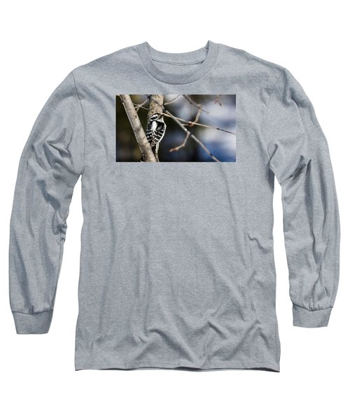 Long Sleeve T-Shirt featuring the photograph Downy Woodpecker by Dan Traun
