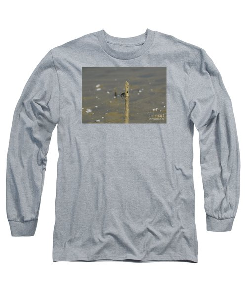 Dragonfly On Old Wood Long Sleeve T-Shirt