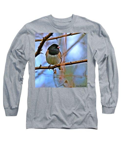 Dreamworld Long Sleeve T-Shirt by Steve Warnstaff