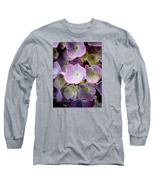 Long Sleeve T-Shirt featuring the photograph Dreamy Hydrangea by Mimulux patricia no No