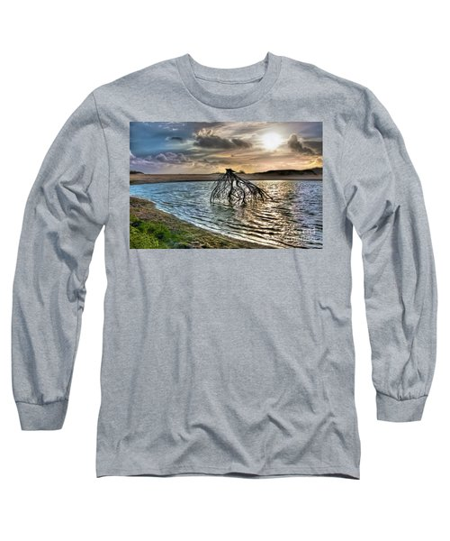 Driftwood In A Tide Pool Outer Banks Ap Long Sleeve T-Shirt by Dan Carmichael