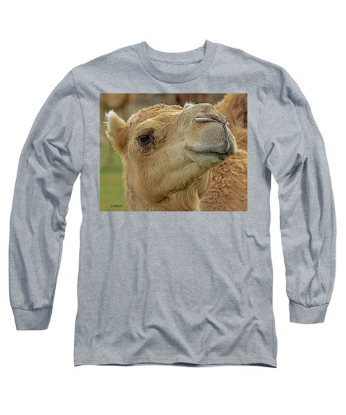 Dromedary Or Arabian Camel Long Sleeve T-Shirt