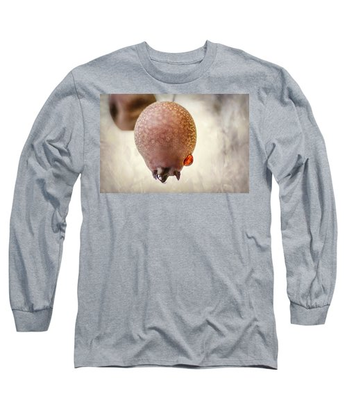 Droplet On A Bud Long Sleeve T-Shirt
