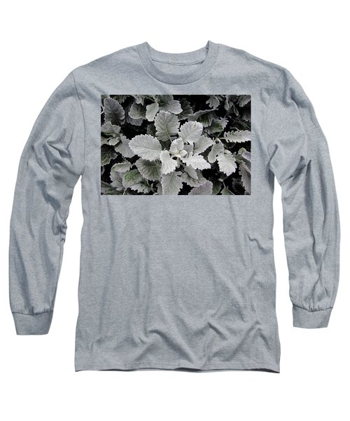 Dusty Miller Long Sleeve T-Shirt