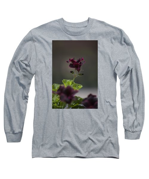 Dying Embers Long Sleeve T-Shirt by Morris  McClung