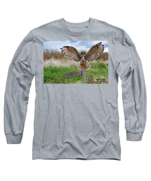 Eagle Owl On Signpost Long Sleeve T-Shirt