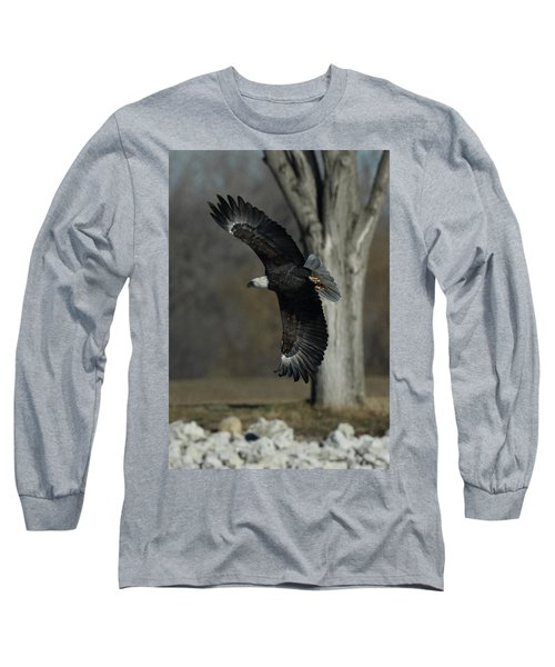 Eagle Soaring By Tree Long Sleeve T-Shirt by Coby Cooper