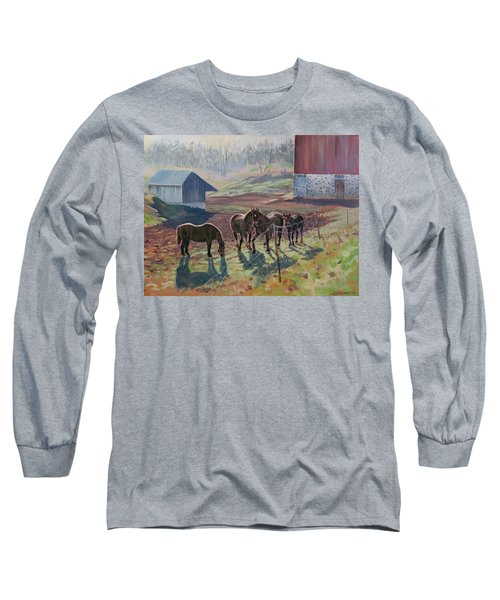 Early December At The Farm Long Sleeve T-Shirt by David Gilmore