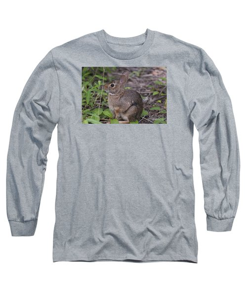 Long Sleeve T-Shirt featuring the photograph Eastern Cottontail 20120624_11a by Tina Hopkins