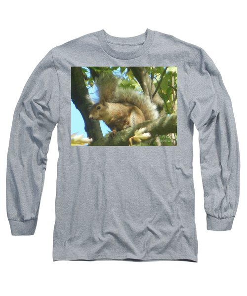 Long Sleeve T-Shirt featuring the photograph Eastern Gray Squirrel Branch by Rockin Docks Deluxephotos