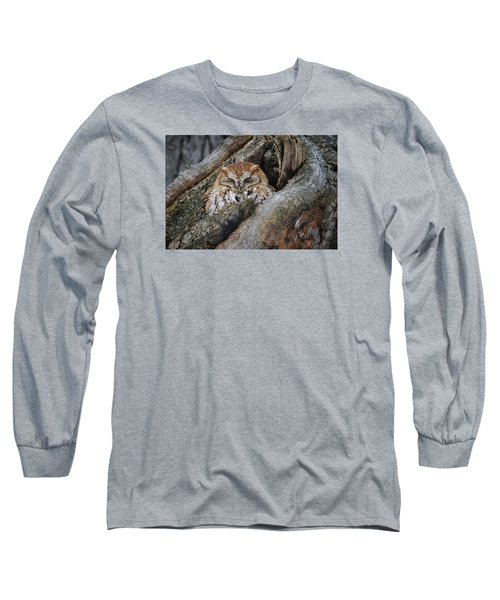 Eastern Screech Owl 2 Long Sleeve T-Shirt by Gary Hall