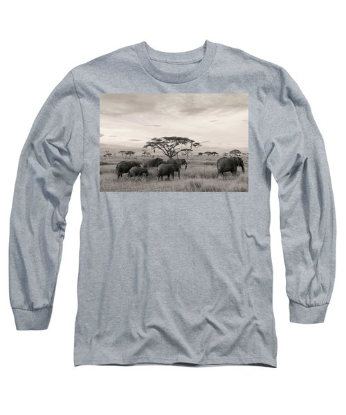 Long Sleeve T-Shirt featuring the photograph Elephants by Stefano Buonamici