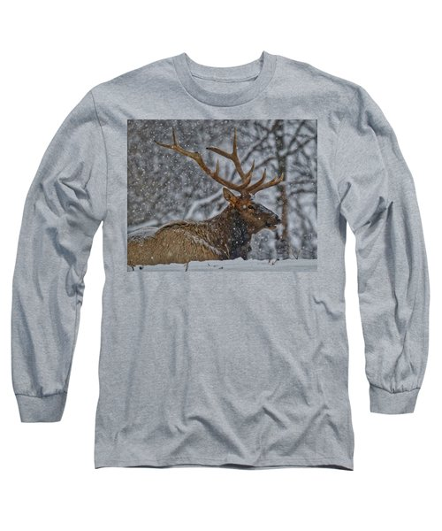 Elk Enjoying The Snow Long Sleeve T-Shirt by Michael Peychich