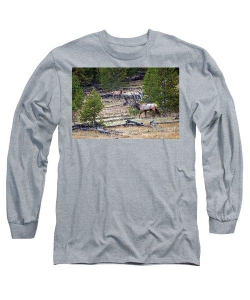 Elk In Yellowstone Long Sleeve T-Shirt