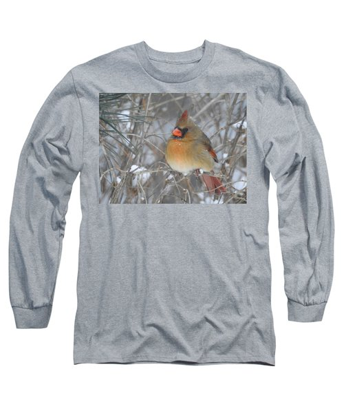 Enjoying The Snow Long Sleeve T-Shirt by Betty-Anne McDonald