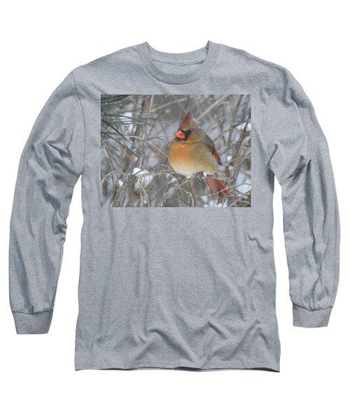 Enjoying The Snow Long Sleeve T-Shirt