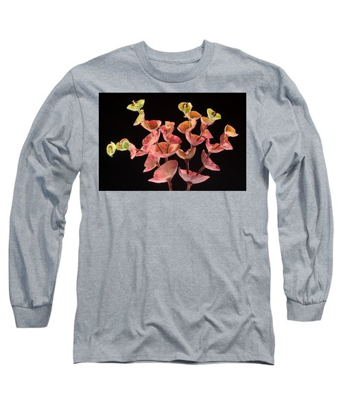 Euphorbia Long Sleeve T-Shirt