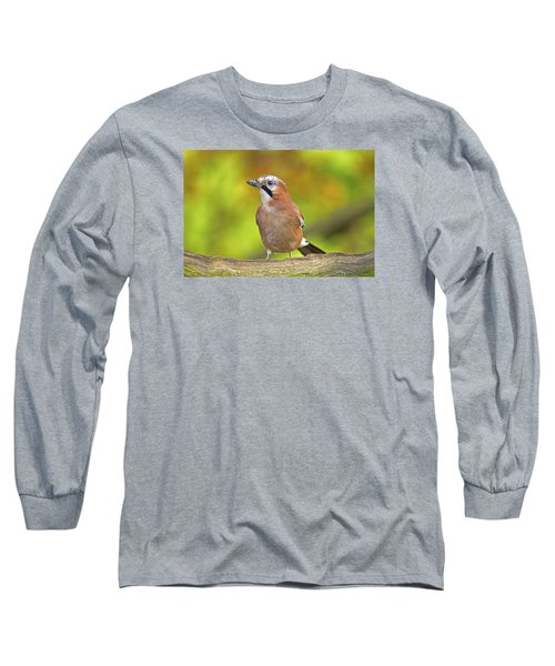 Long Sleeve T-Shirt featuring the photograph Eurasian Jay by Paul Scoullar
