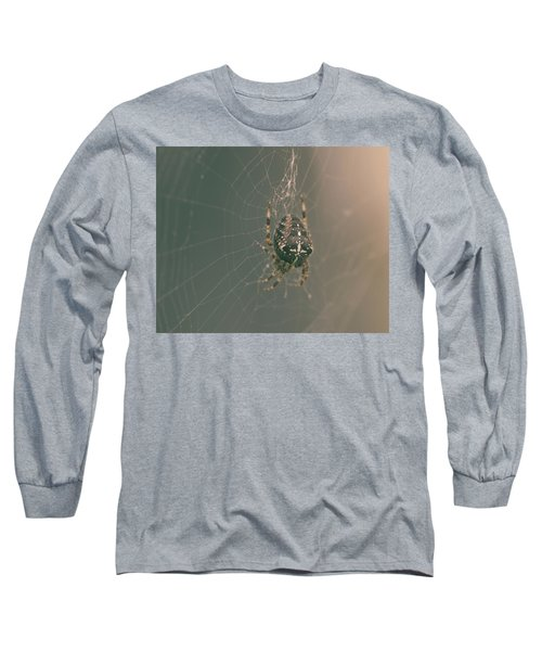 European Garden Spider B Long Sleeve T-Shirt