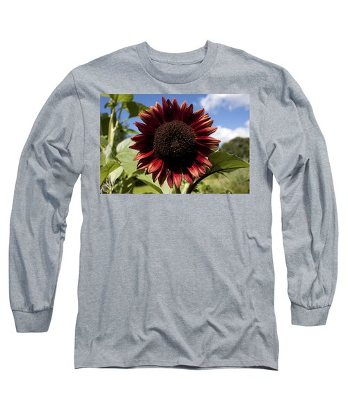 Evening Sun Sunflower #2 Long Sleeve T-Shirt