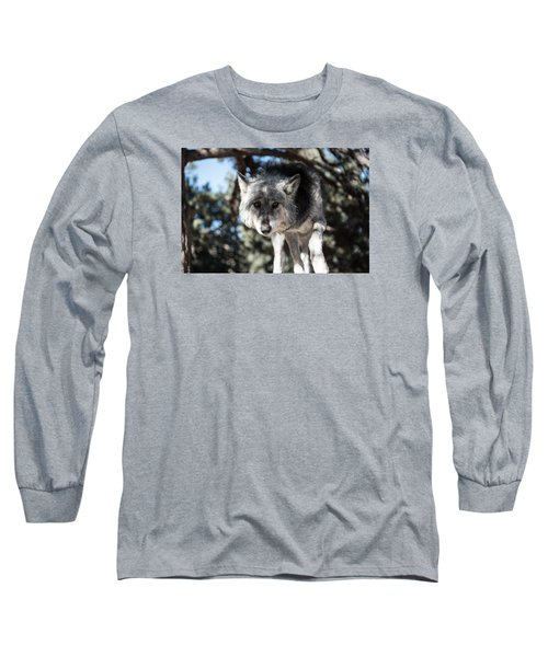 Eyes On The Prize Long Sleeve T-Shirt