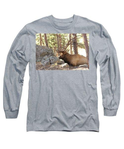Faabattlescarredbull001 Long Sleeve T-Shirt