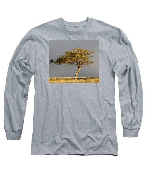 Fall At The Crabapple Tree Long Sleeve T-Shirt