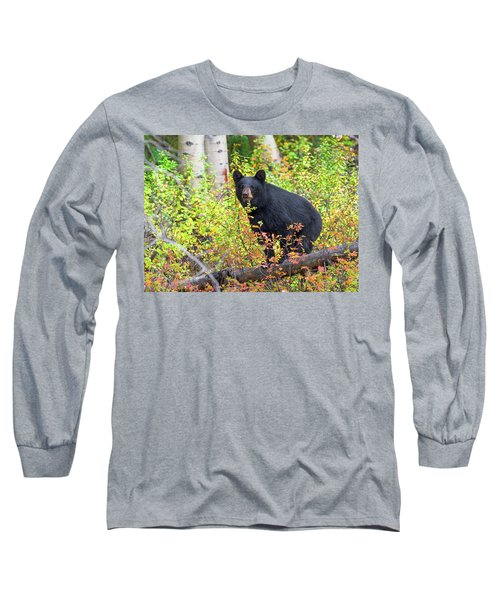 Fall Bear Long Sleeve T-Shirt