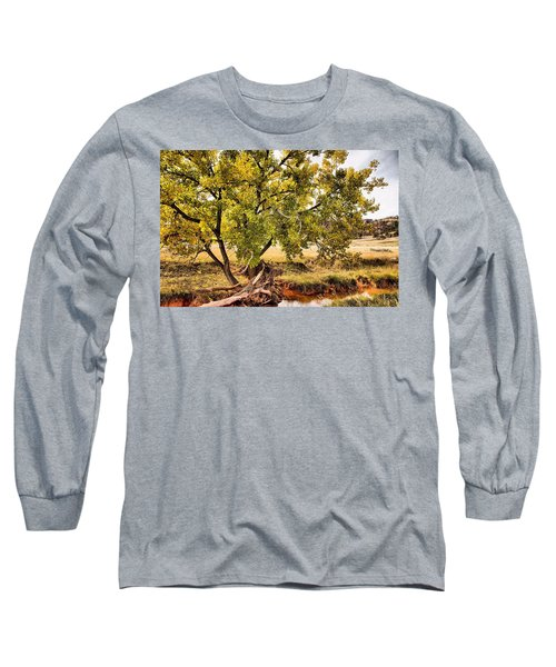 Fall Color Long Sleeve T-Shirt