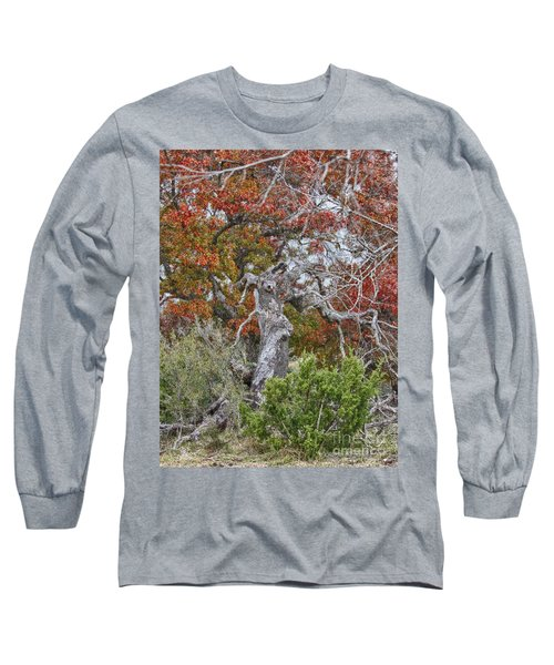 Fall Colors Once Again Long Sleeve T-Shirt