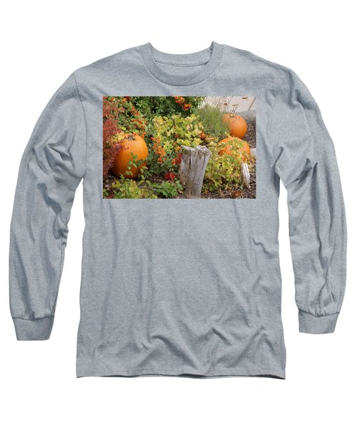 Fall Garden Long Sleeve T-Shirt by Cynthia Powell