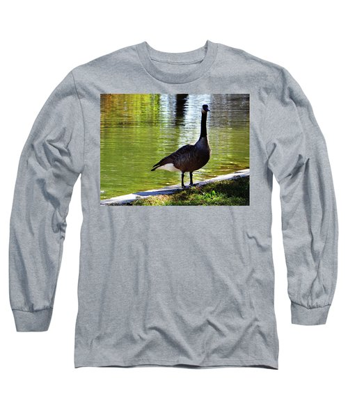 Fall Goose Long Sleeve T-Shirt