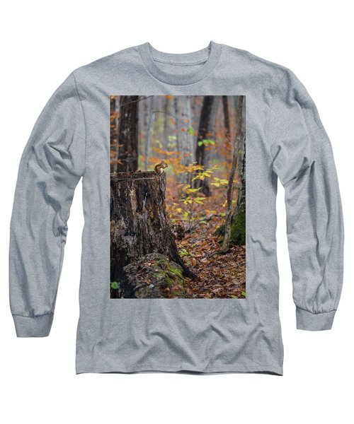 Fall Scene Long Sleeve T-Shirt