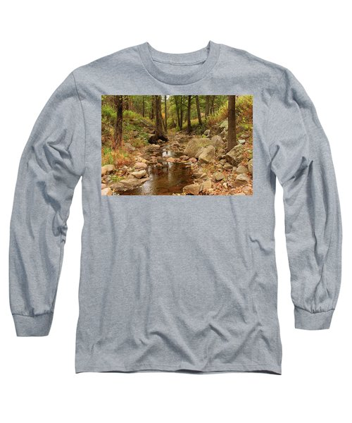 Fall Stream And Rocks Long Sleeve T-Shirt by Roena King