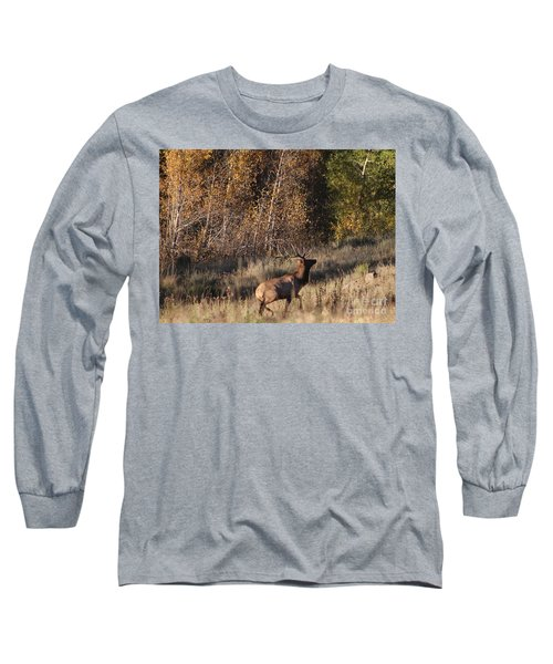 Fall Sunset Satellite Bull Elk II Long Sleeve T-Shirt