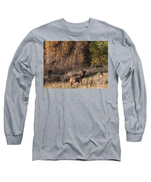 Fall Sunset Satellite Bull Elk II Long Sleeve T-Shirt