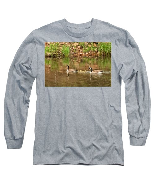 Family Of Geese Long Sleeve T-Shirt